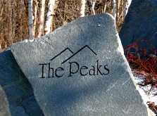 Mount Snow Peaks Premiere Homes