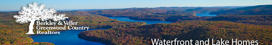 Mt Snow Lake Homes For Sale Real Estate Vermont