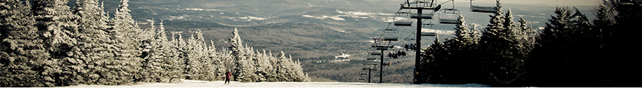 Mount Snow Real Estate Vermont - Adam Palmiter Realtor